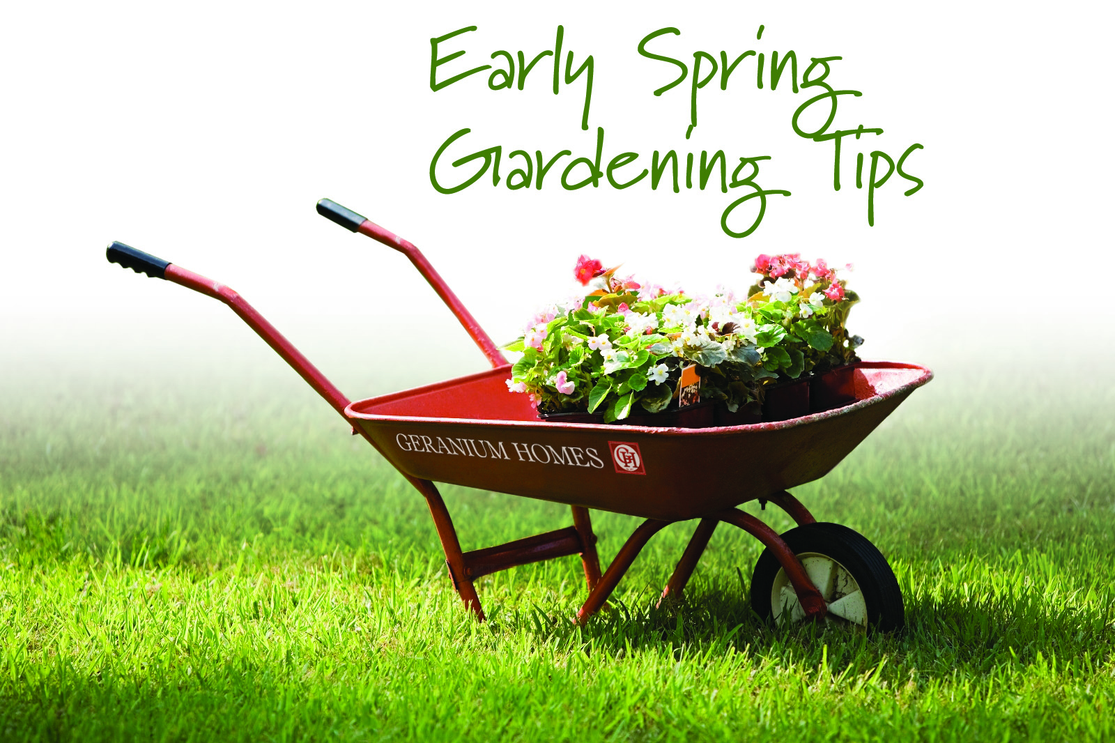 Charmant Early Spring Gardening Tips