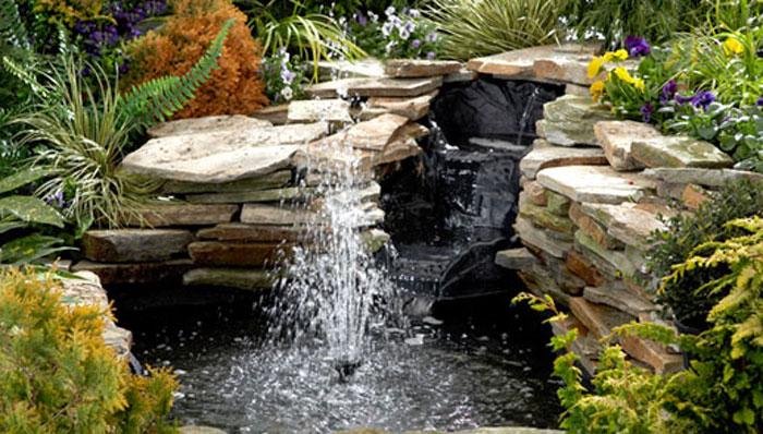 Big backyard pond | Geranium Blog