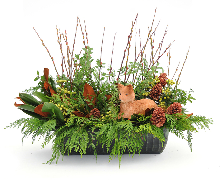 Beautiful planter from Sheridan Nurseries adds the evergreen fragrance to your home.