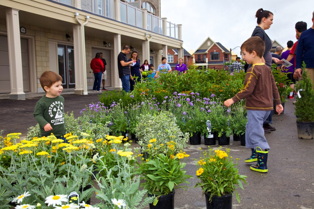 Neighbourhood in Bloom annual event in Cardinal Point